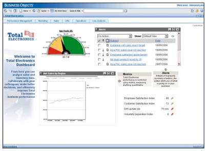 Business objects dashboard manager